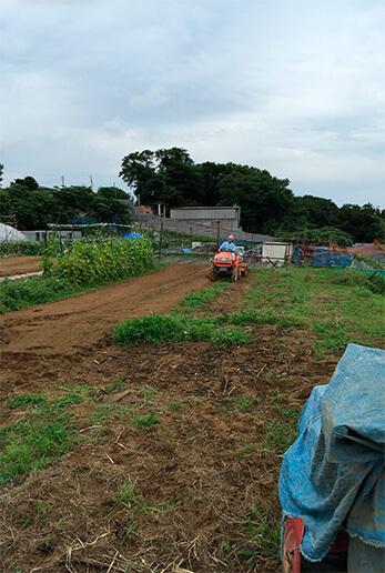 収穫した後は土を休ませます。雑草も生えた土地は、トラクターで雑草ごと耕起。