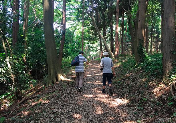 市民農園の隣には立派な森が。空気もひんやり。この道を抜けて義母の畑へ。